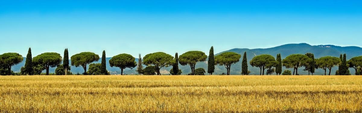 Sehnsucht Italien