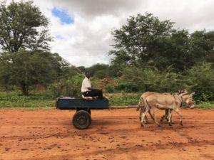 Leute_in_Zimbabwe1