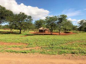 Zimbabwe_Landschaft