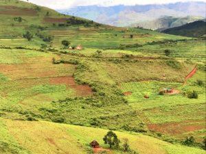 landschaft_Zimbabwe